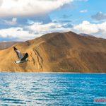 Nước màu xanh dương là điểm đặc trưng của chuỗi hồ ở Ladakh