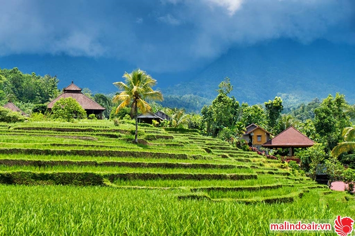 Bản đồ đường bay từ HCM đi Bali