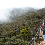 Trải nghiệm leo núi Borneo tại công viên Kinabalu