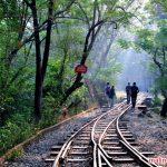 Vườn quốc gia Borivali