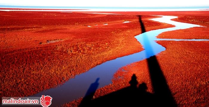 Vùng biển đỏ ấn tượng ở Trung quốc