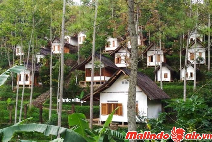Cả 1 khu bungalow để bạn nghỉ đêm