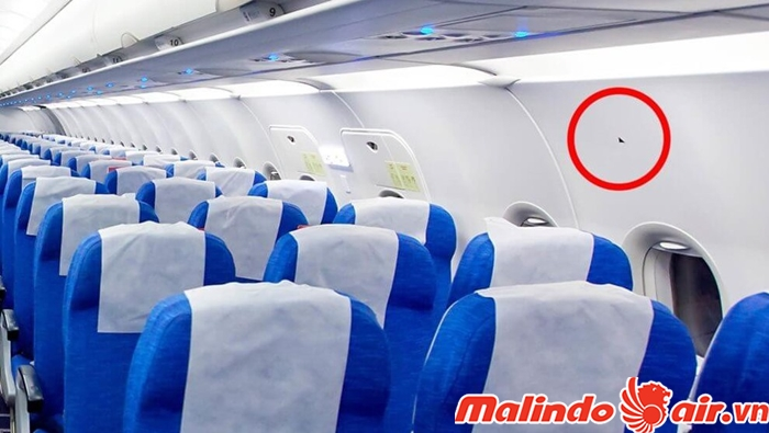 Móc vàng là chỗ để cố địnhdây kéo giữa cánh máy bay và xuồng cứu sinh