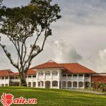 Capella Singapore Hotel ẩn khuất sau những tán cây