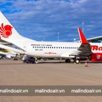 Malindo air chấp nhận vận chuyển vũ khí, đạn dược nhưng cần tuân thủ các quy định