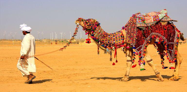 Lễ hội Rajasthan - Ấn Độ